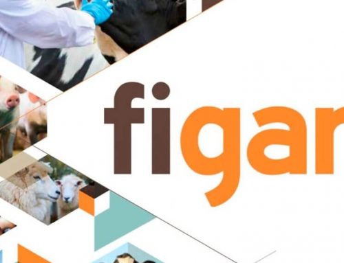 FIGAN 2019 · 14ª FERIA INTERNACIONAL PARA LA PRODUCCIÓN ANIMAL